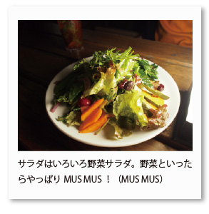 サラダはいろいろ野菜サラダ。野菜といった らやっぱりMUS MUS!(MUS MUS)