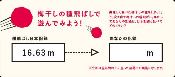 2017_tanabe-17